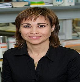 Speaker at upcoming Pharmaceutics conferences- Maria J. Vicent